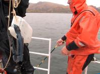 Как заявили в экологической организации, новые результаты исследования акватории Халактырского пляжа и Авачинского залива, проведенные в октябре - ноябре 2020 года, подтверждают то, что источником загрязнения океана мог стать Козельский полигон